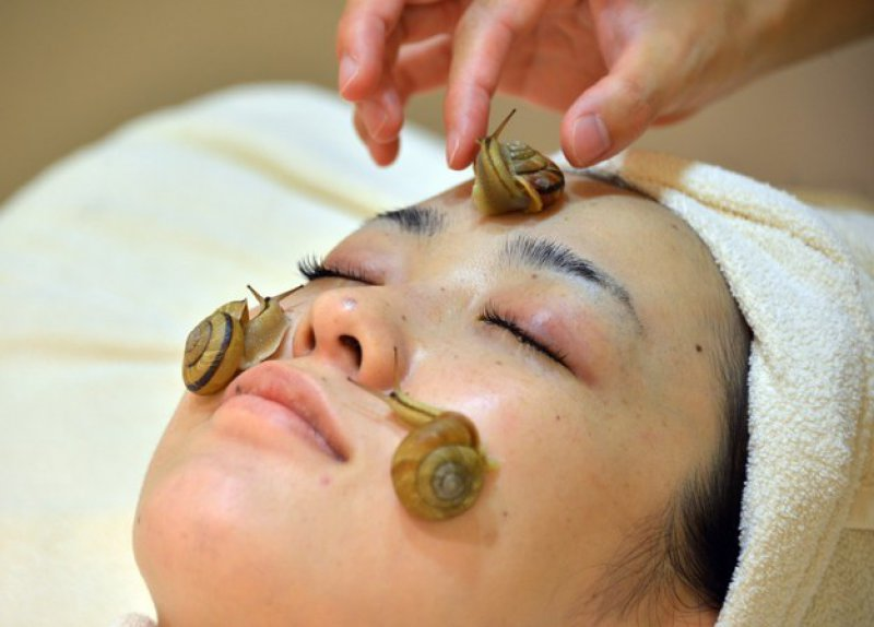 Snail Spas-15 Weird Things That Can Happen Only In Japan