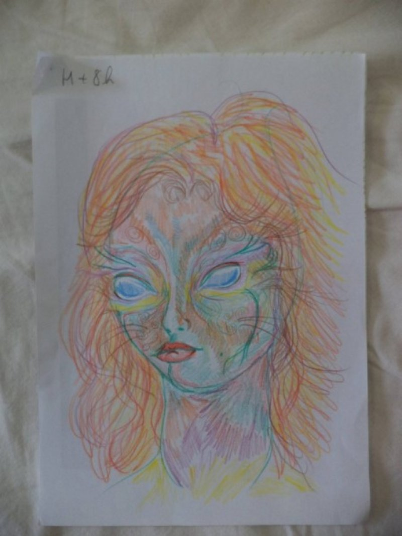 After 8 Hours-A Woman Draws Her Self Portraits During Her First Acid Trip