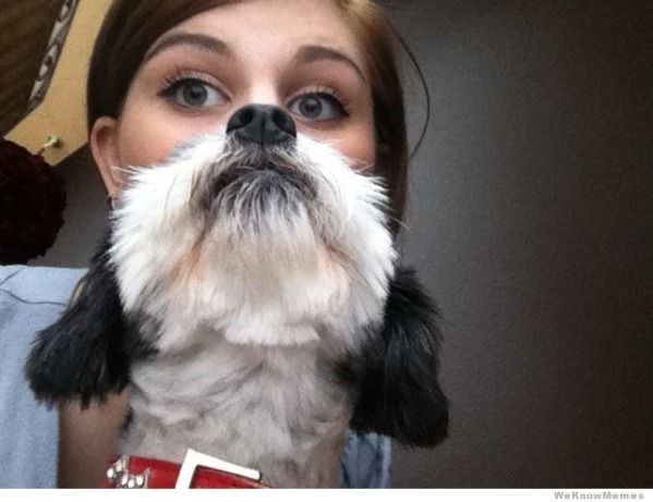 Rising Of Dog Beards-15 Epic Dog Beards That Will Make You Want To Have One