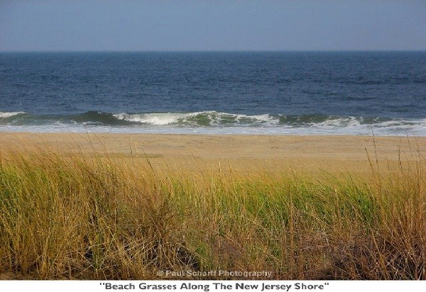 Jersey Shore Beach-Places To Visit In New Jersey