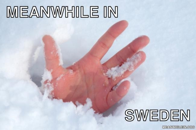 That snow has got deeper-Best Meanwhile In Sweden Memes