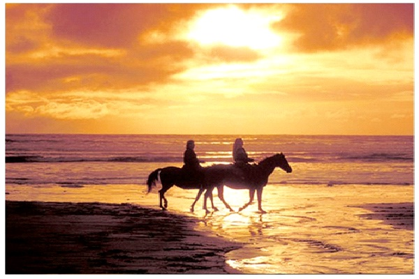 Ride A Horse On A Beach-Best Bucket List Ideas