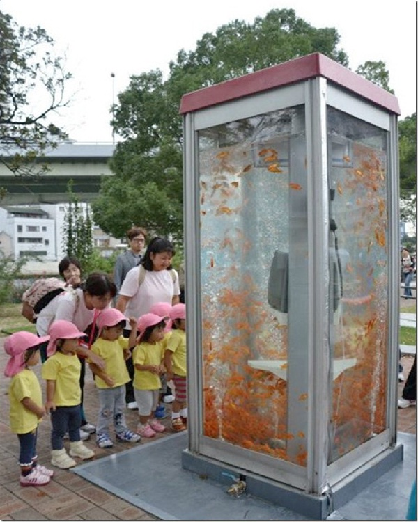 Phone Booth-Creative Aquariums