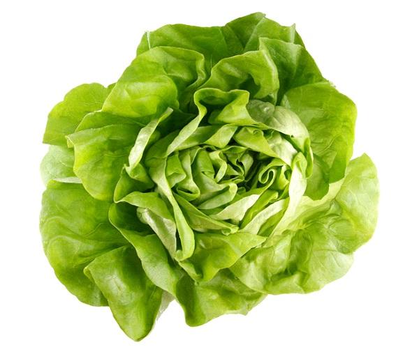 Lettuce-Foods That Make You Sleepy