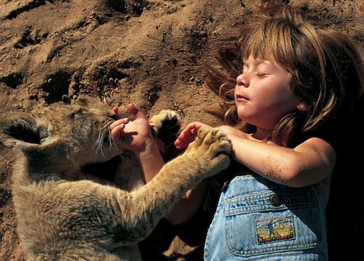Just playing with lions-Meet Chuck Norris's Wife And Kids