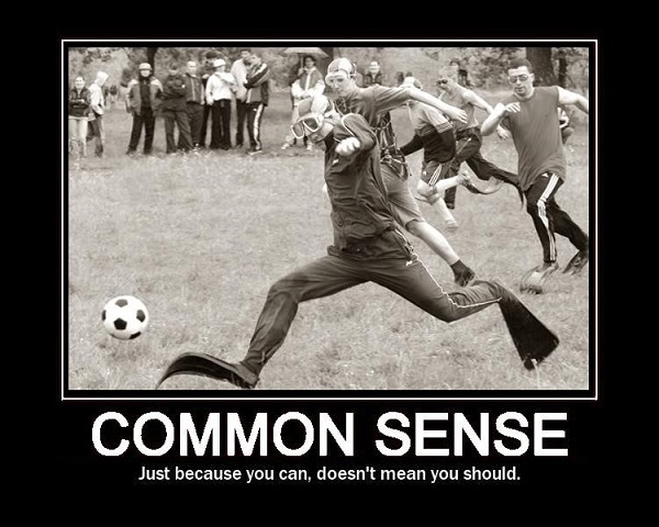 Common sense-Things That Money Can't Buy