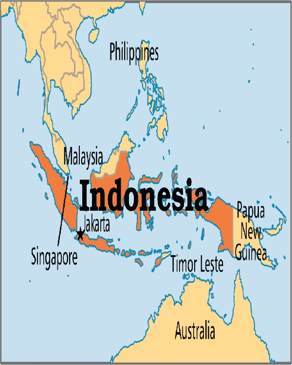Indonesia-Top Countries With Highest Diabetic Population