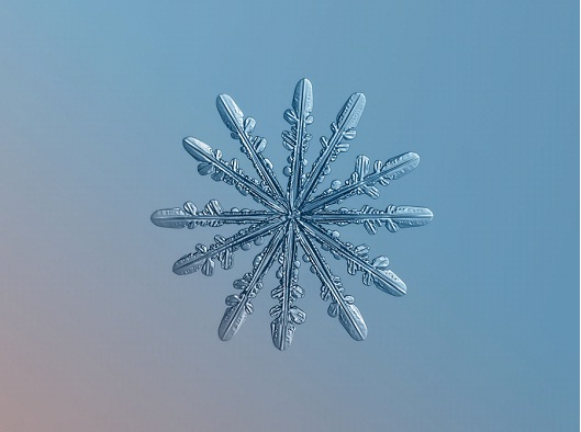 Feathered Star-Awesome Close-Up Pictures Of Snowflakes By Alexey Kljatov