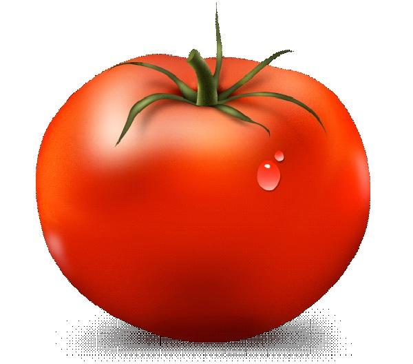 Tomatoe-Most Popular Myths Debunked