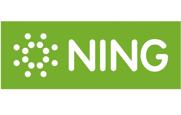 Ning-Popular Social Networks Other Than Facebook