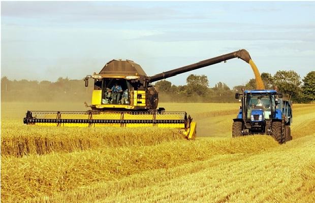Food-Renewable Energy Sources