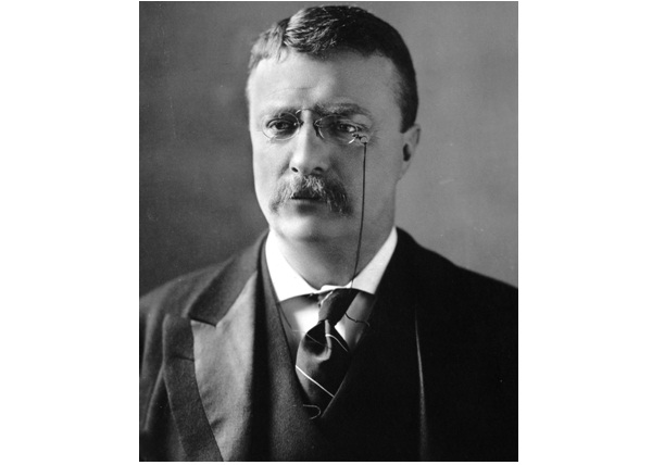 Theodore Roosevelt-Best Presidential Quotes