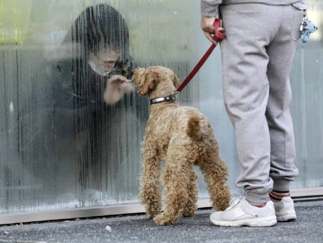 Modern Life-Pics That Will Melt Your Heart