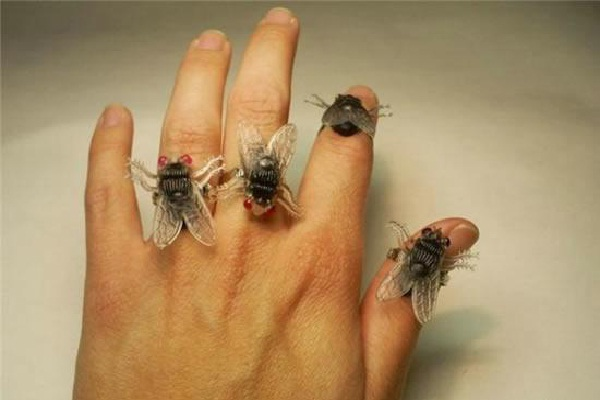 Ew!-Wackiest Rings To Wear