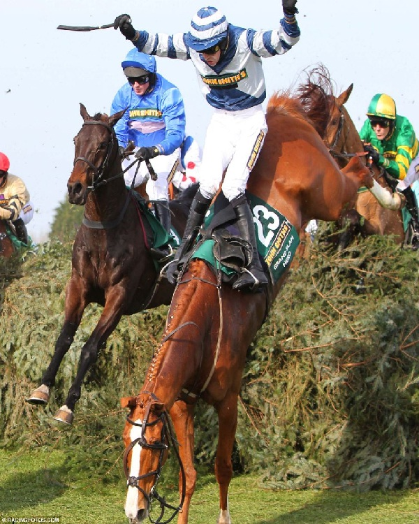 Horse racing-Most Dangerous Sports In The World