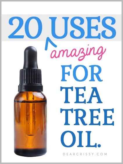 Tea Tree Oil For Ticks-Camping Hacks That Make Life Easier