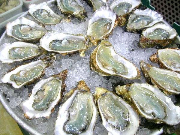Oysters-Most Consumed Sea Foods
