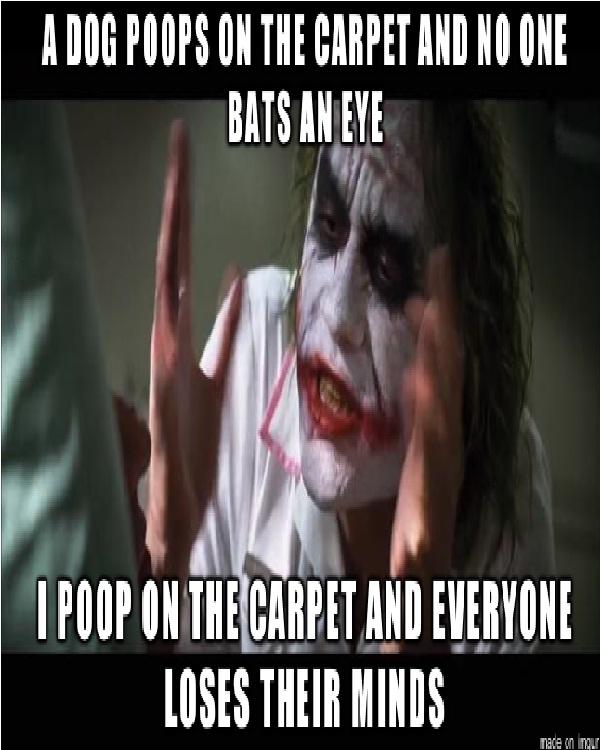 Poop-Best Joker Memes