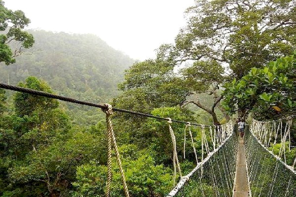 Musou Tsuribashi - Japan-Most Extreme Bridges Around The World