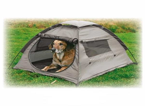 Pets-Must Have Camping Essentials