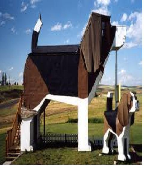 The dog lover-Weirdest Houses In The World