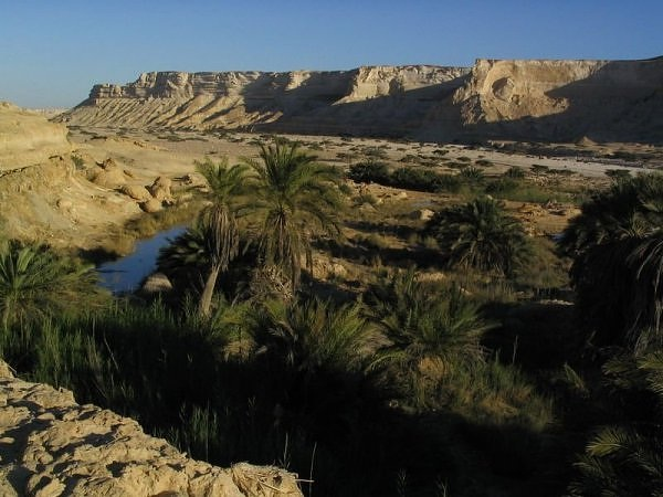 Oman Desert Oasis-Beautiful Oases Around The World