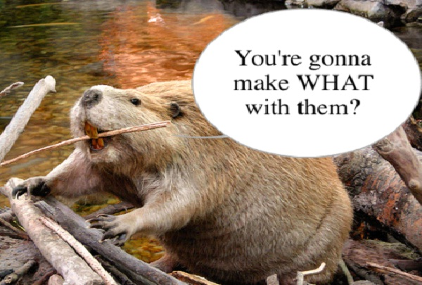 Beaver Testicles-Craziest Birth Control Methods
