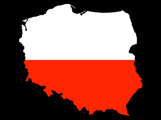 Polish-Toughest Languages To Learn