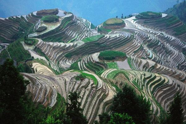Longji Rice Terraces-Amazing Landscapes Around The World