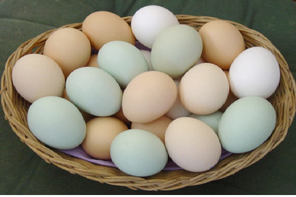 Eggs-Foods That Make You Happy