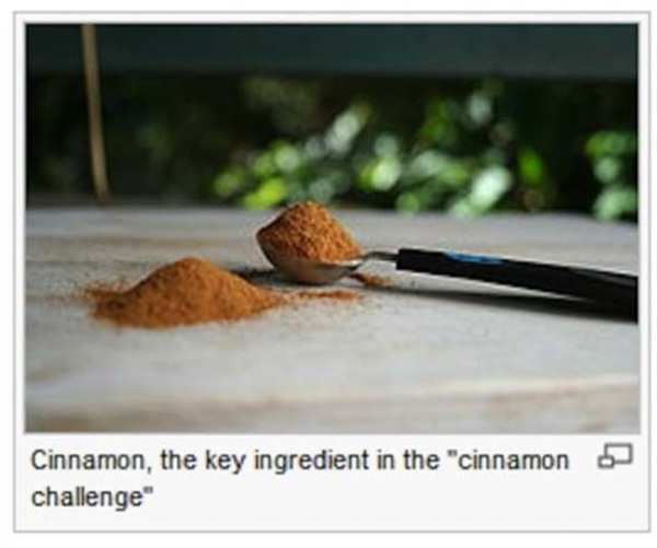 Well it wouldn't be eggs-12 Most Ridiculous Wikipedia Picture Captions
