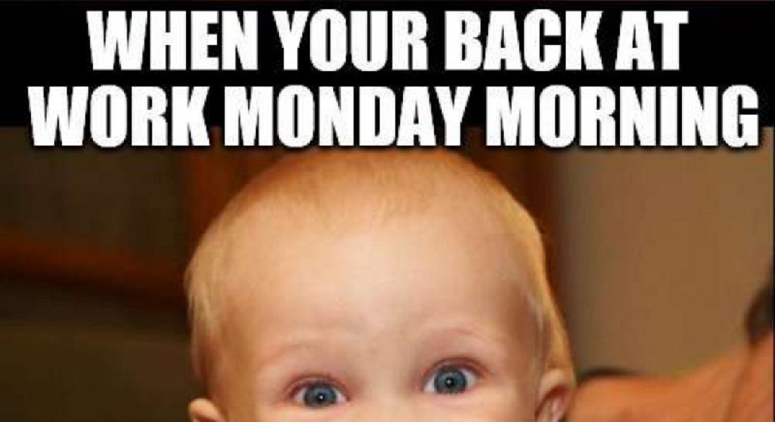 12 Funny Monday Memes That Will Brighten Your Monday