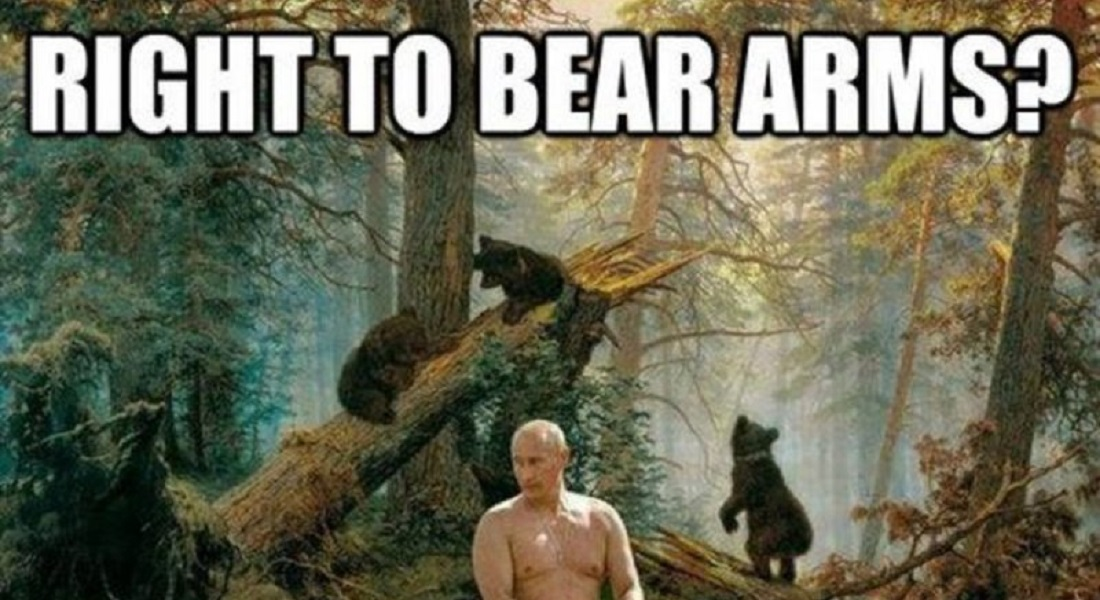 12 Hilarious Bear Puns That Will Make You Cry