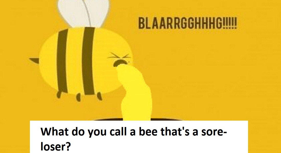 12 Hilarious Bee Puns That Will Make Your Day