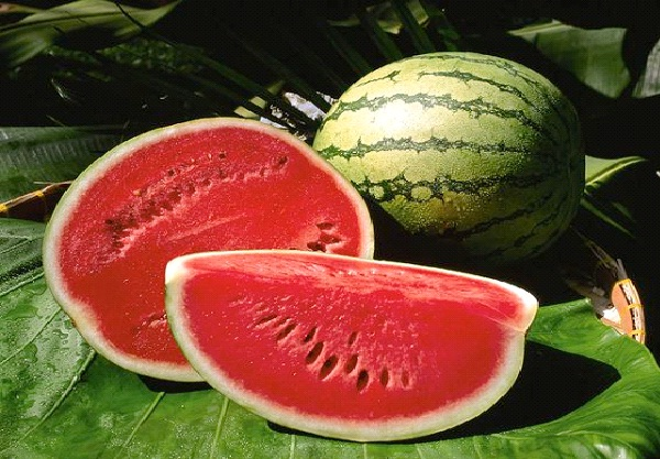 Watermelon-Foods That Help Building Blood
