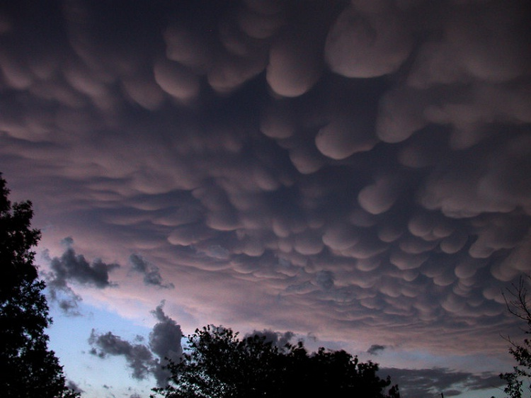 Mammatus-Different Types Of Clouds