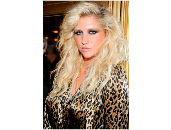 Ke$ha: The Writer-Facts About Ke$ha