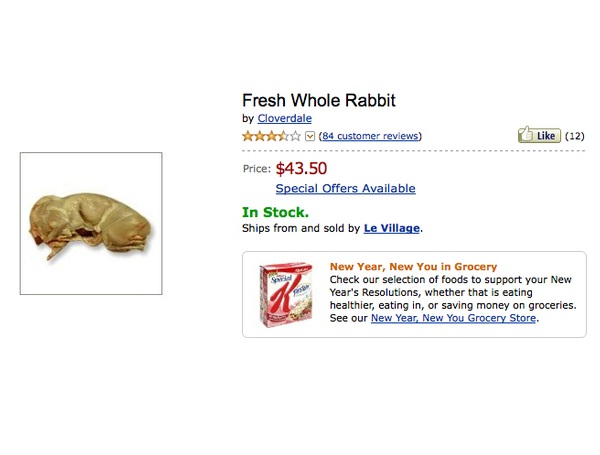 Rabbit-Amazing Things To Buy On Amazon