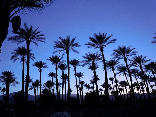 Palm Springs-Best Cities For A Bachelorette Party
