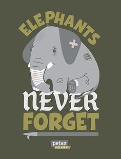 Elephants Remember-Facts About Circuses