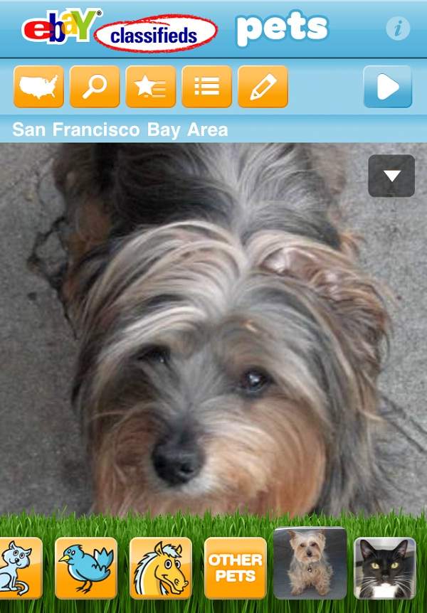Pet Adoption-Weird Ebay Facts
