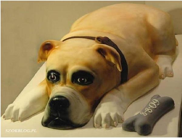Dazed Dog Cake-Most Amazing Dog-Shaped Cakes