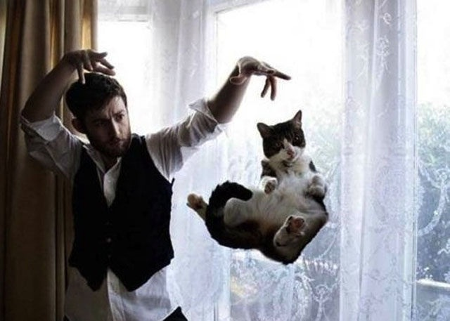 Finally They Listen!-Amazing Perfectly Timed Photos Of Animals