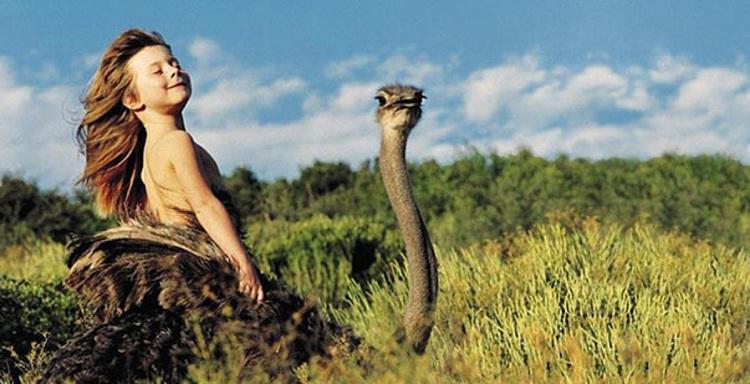 Riding An Ostrich-Meet Chuck Norris's Wife And Kids