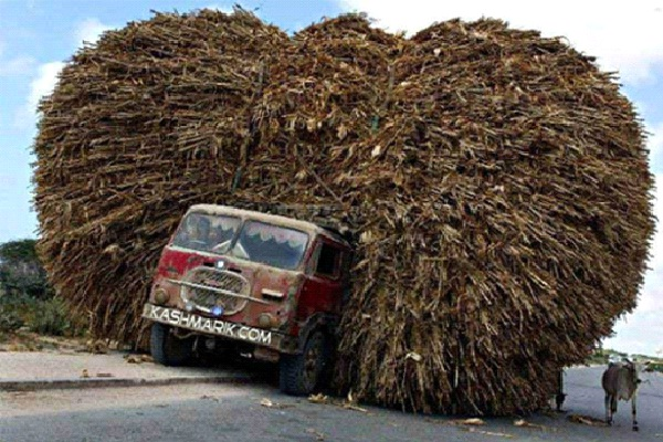 Haystack-Small Vehicles, Big Loads