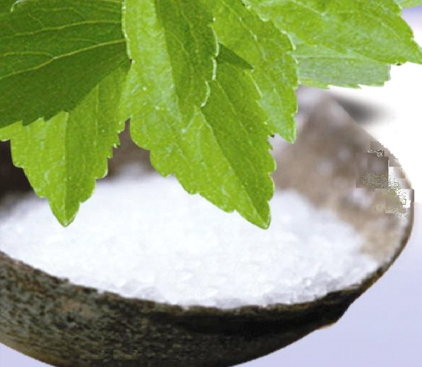Stevia Instead of Sugar-Healthy Food Alternatives To Your Daily Food