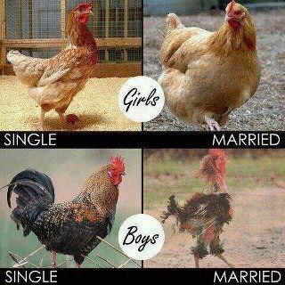 The Different Sexes-Funny Before And After Marriage Pics