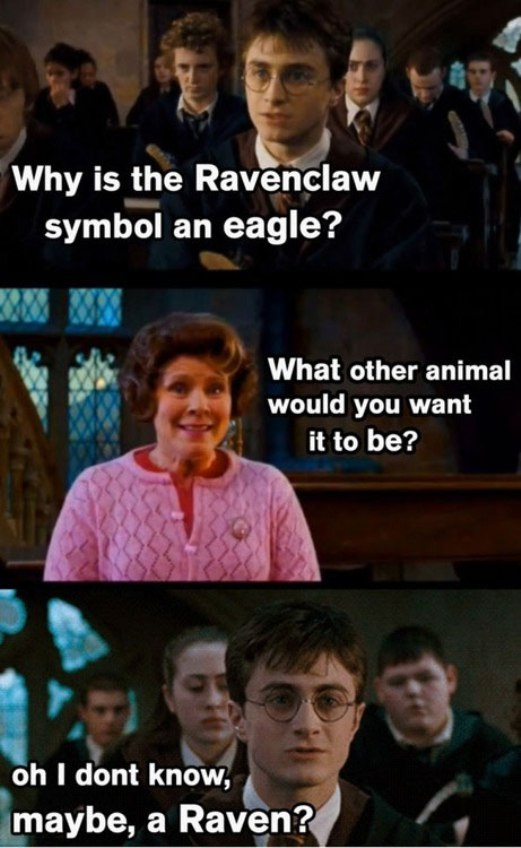 Stating the obvious-15 Hilarious Harry Potter Memes Ever