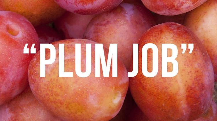 Plum job-Where British Phrases Came From