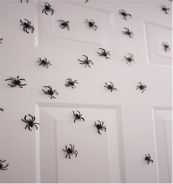 Scary Spiders-Best Roomate Pranks